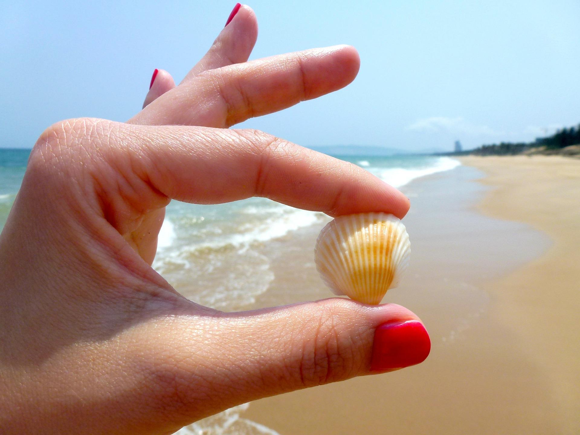 beach-544621_1920