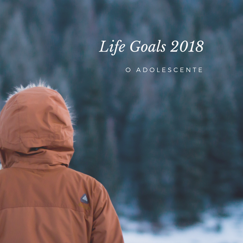 Life Goals 2018
