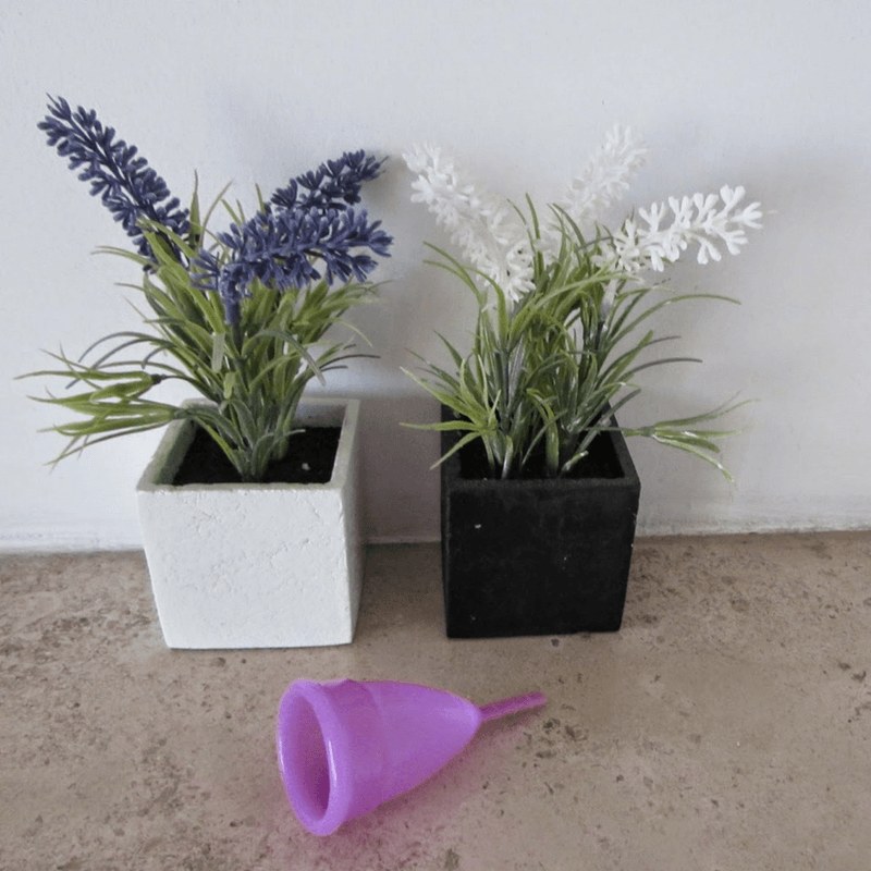 Na senda da Sustentabilidade – copo menstrual