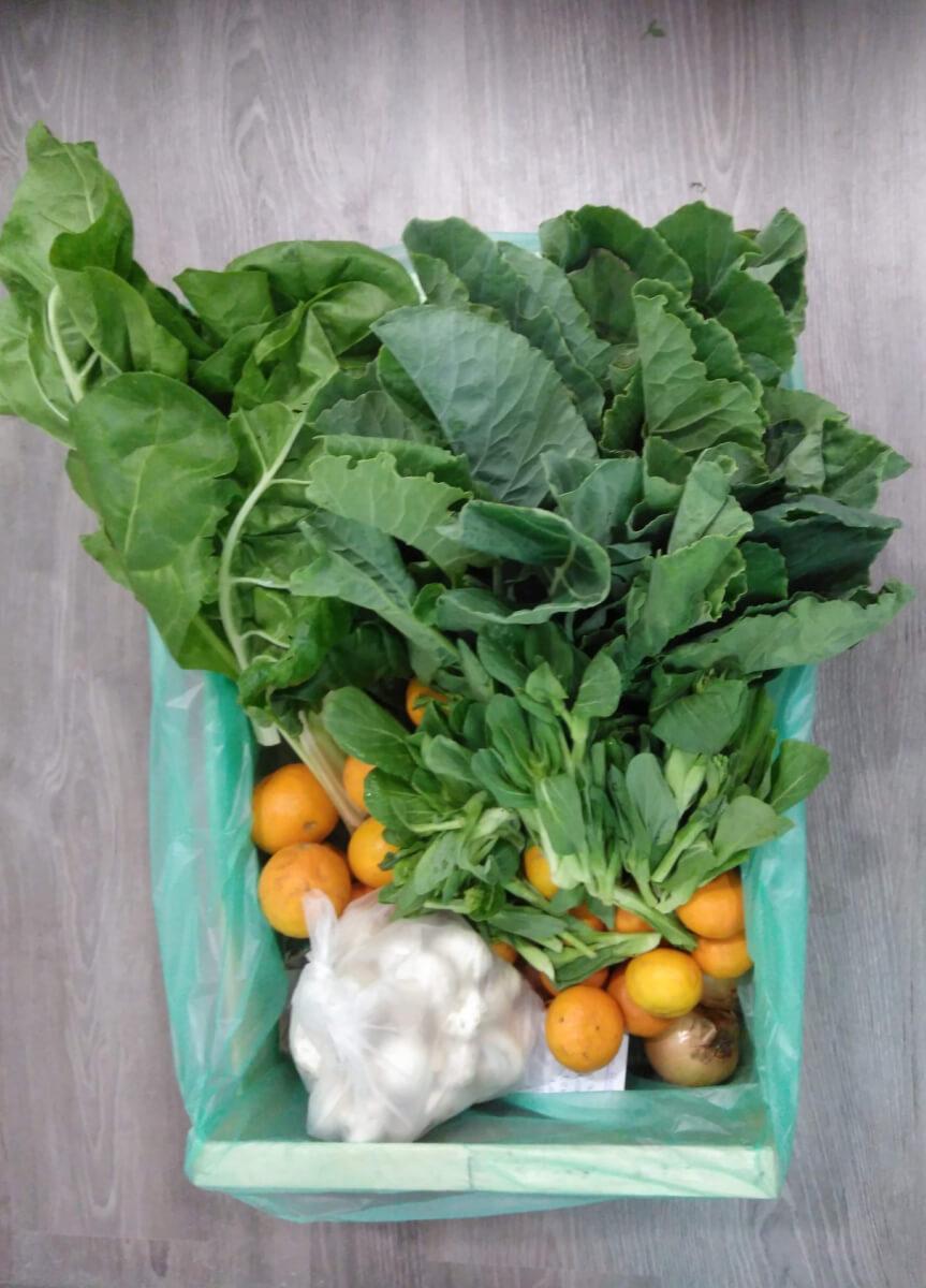 Bio e saudável em casa com Mercado Natura!