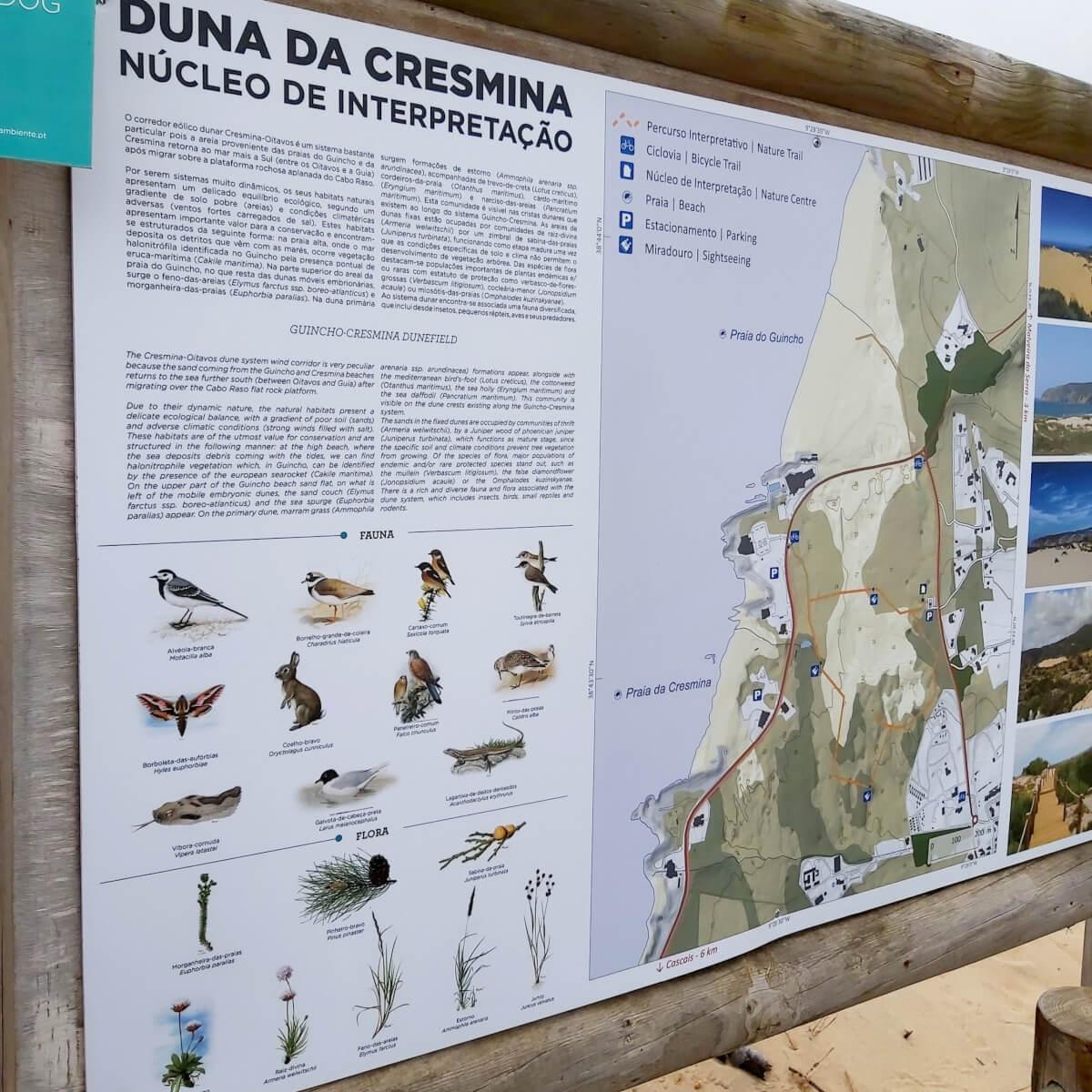 Dunas de Cresmina, uma exploração em família
